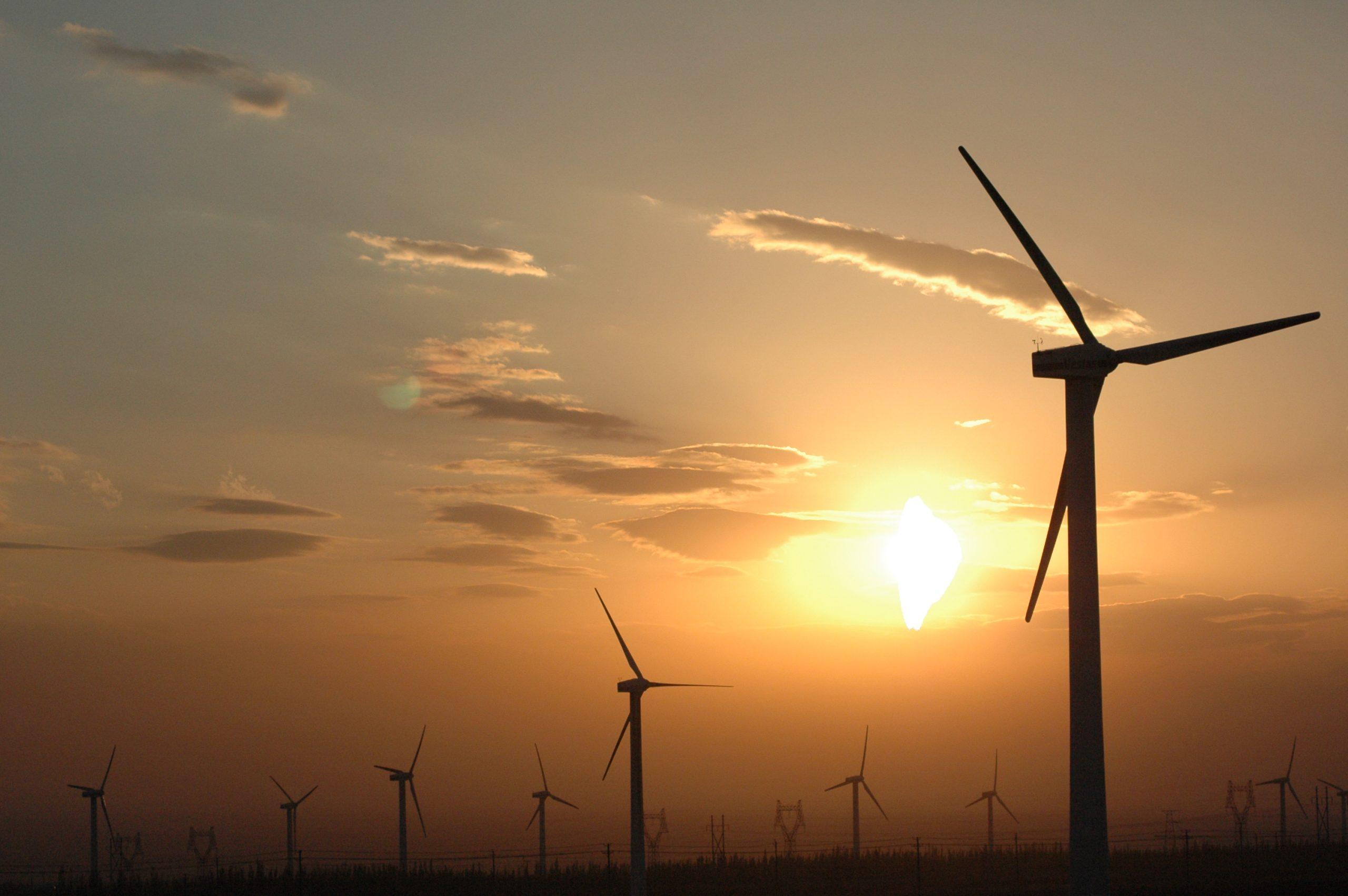 Zeni Wind Power Project, 50 MW Karachi, Pakistan, 2008-2009
