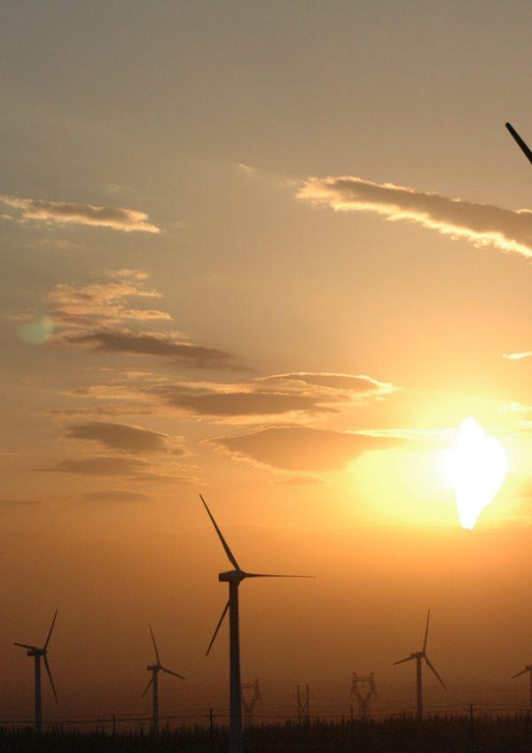 Wind_power_plants_in_Xinjiang,_China